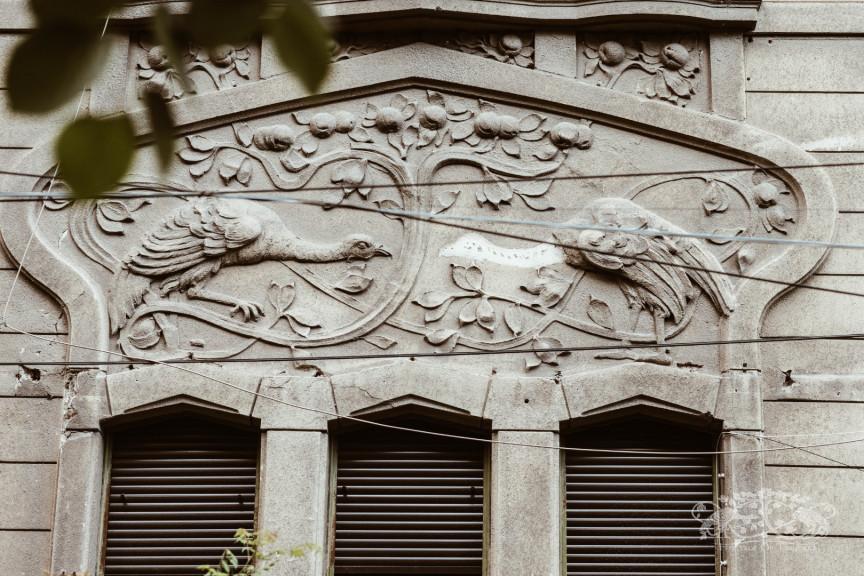 Romulus Nicolin House