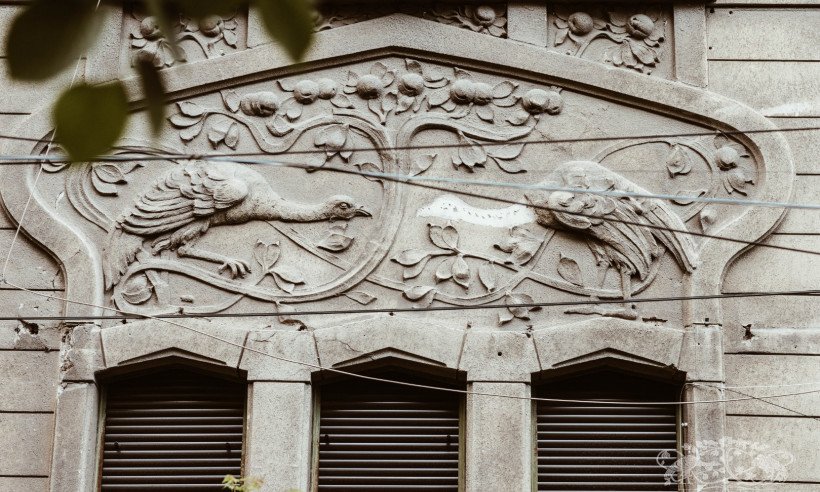 Casa Romulus Nicolin